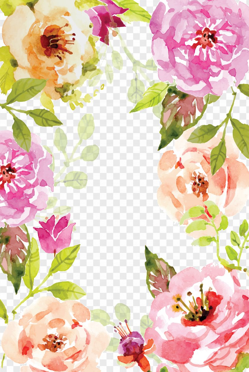 Watercolor Flowers Border Vector PNG