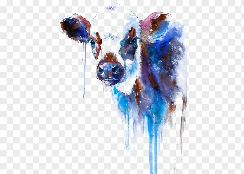 Watercolor Cow PNG